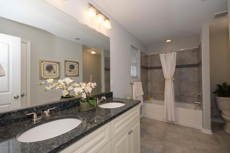 Model homes master bath home box ideas for Model home bathroom photos